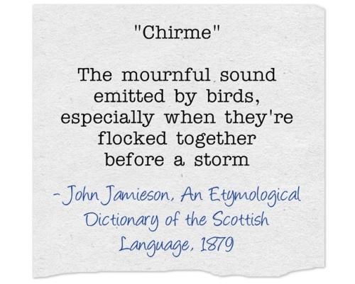 Word of the Week: Chirme