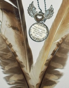 Red-Tailed Hawk Feathers