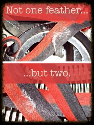Typewriter Feathers