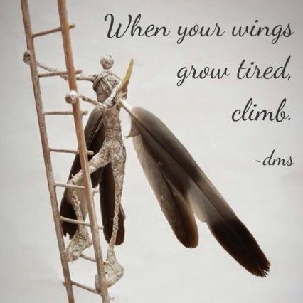Wings Climb